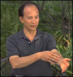 Qigong Videos by Chunyi Lin
